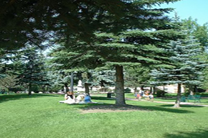 Morinville Parks & Playgrounds